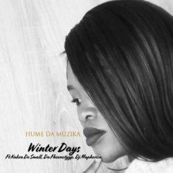 Hume Da Muzika – Winter Days (feat. Kabza De Small, DJ Maphorisa & Da Fheenotyyp)