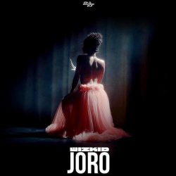 download Joro – Wizkid 2019