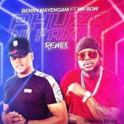 baixar musica de Benny Mayengani ft. Mr Bow – Phuza Ni Famba (Remix)